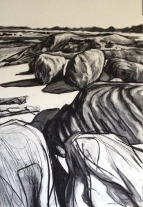 Greens Pool, William Bay Denmark, Charcoal on paper, 78x54cm $600